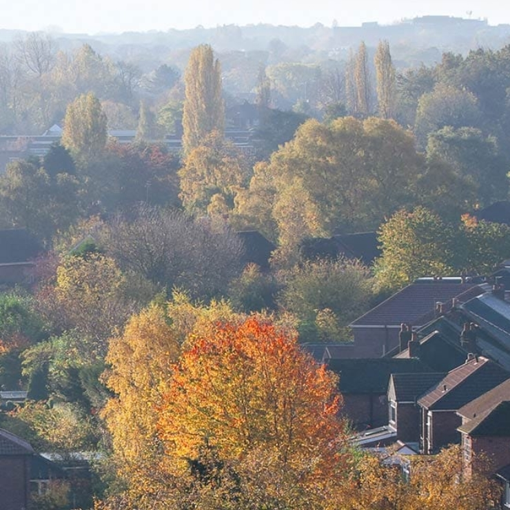 Autumn houses skyline view - Uk property market report from the Property activity Index