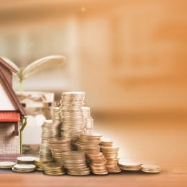 House with money and a plant - Property activity