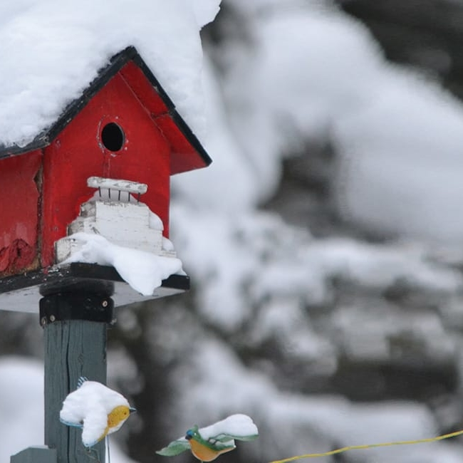 Snow on house - property market report form the Property Activity Index
