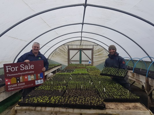 Growing well - estate agency for sale board recycling