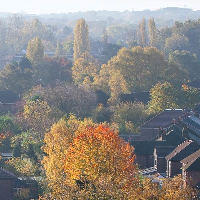 Autumn houses skyline - Property Activity Index