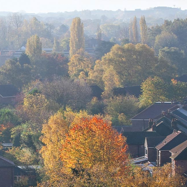 UK property market slows as the Autumn slump sets in