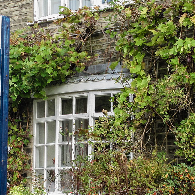 Holmes Naden estate agency board erected outside a cottage - Property Activity Index Report