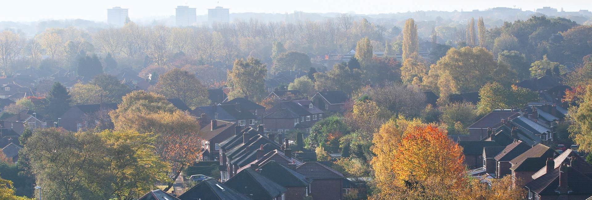 Autumn Property Market - Property Activity