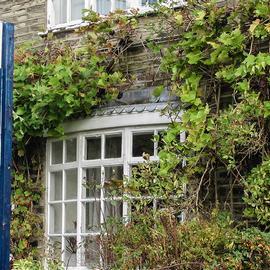 UK lettings market - Property Activity Index